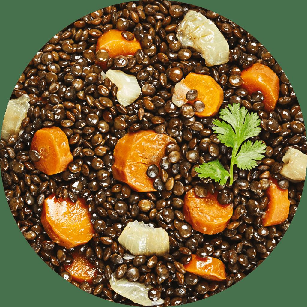 Image de la recette lentilles vertes aux petits légumes à la coriandre fraîche
