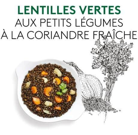 Suggestion de présentation du plat préparé lentilles vertes aux petits légumes à la coriande fraîche